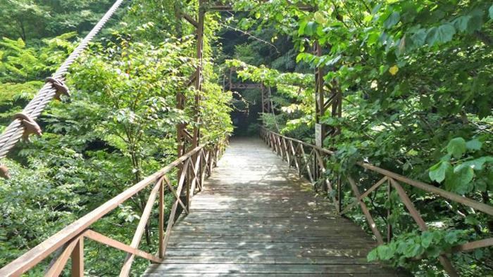 oiran-buchi-yamanashi